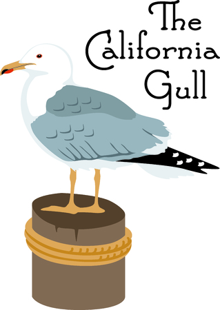 gull: Use this image of a Gull in your next design.