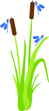 cattail: Use this image of a garden dragonfly in your next design.