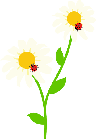 ladybeetle: Use this image of a garden beetle in your next spring design. Illustration