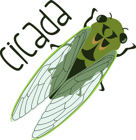 cicada: Use this image of a Cicadas in your next spring design Illustration