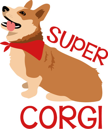 corgi: Dog lovers will enjoy this cute corgi.