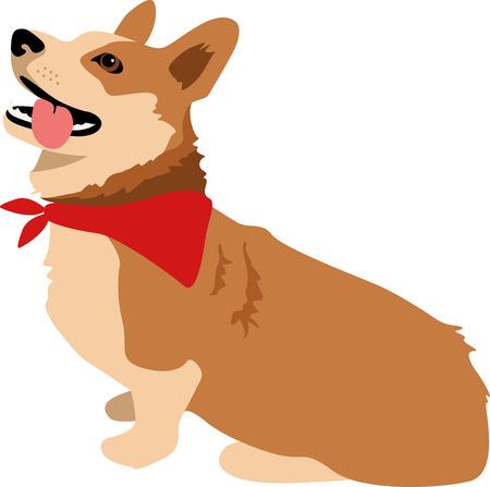 cardigan: Dog lovers will enjoy this cute corgi.