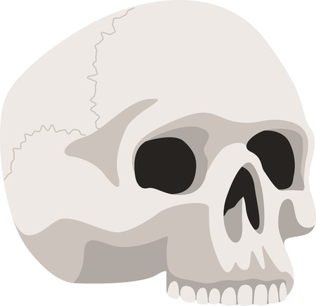 Decorate for Halloween with a spooky skull. Illustration