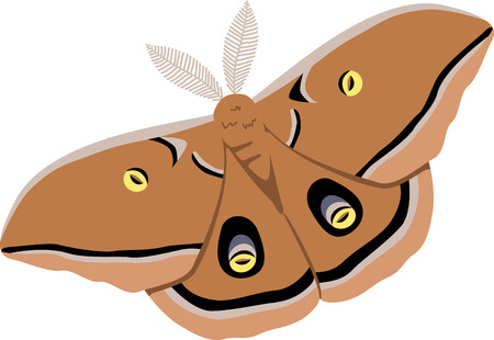 moth: Use this moth for a skirt.