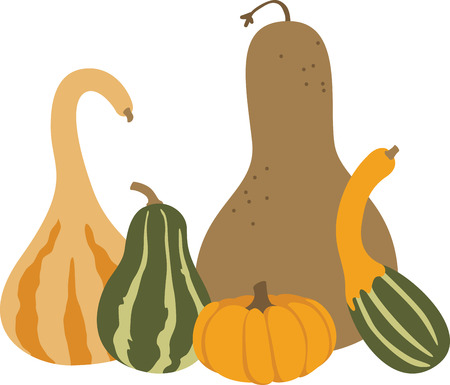 gourds: Colorful gourds make a fine autumn decoration.