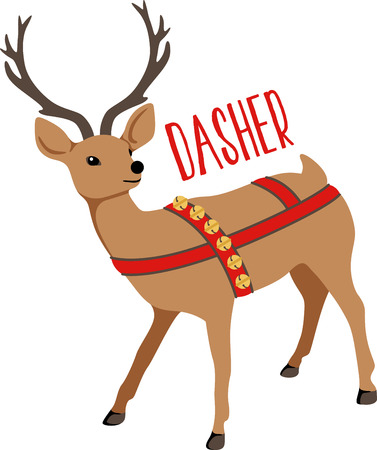 nosed: Reindeer are a great holiday decoration.