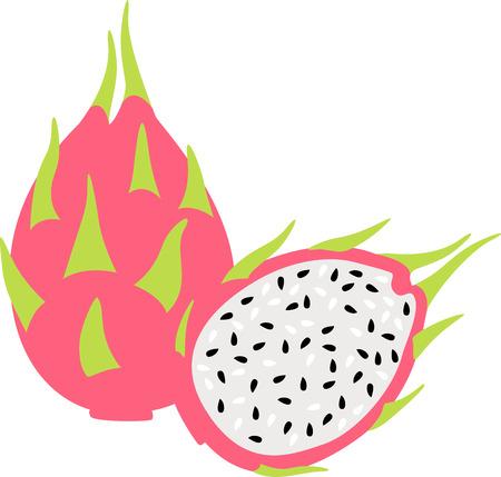 Voeg wat heerlijke dragonfruit toe voor een tropische decoratie. Vector Illustratie