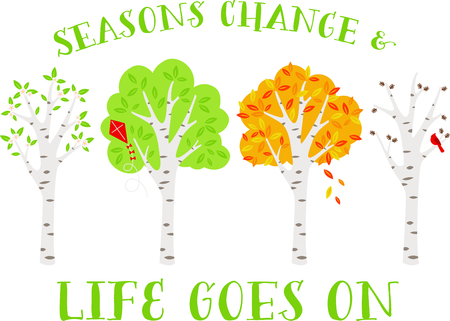 Vier seizoenen bomen van de berk op een rij.