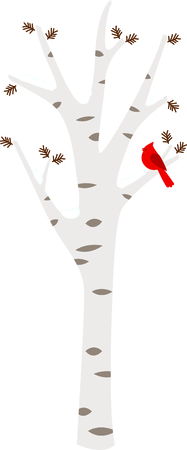 Birch tree with a Cardinal in the wintertime.