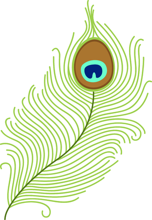 pavo: Peacock eye tail feather for any project you can think of. Illustration