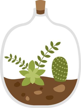Succulent garden in a bottle. 向量圖像