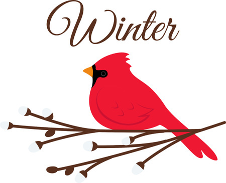 One of the most familiar and popular backyard birds, the Cardinals, with its bright plumage and crested head is a great design on winter and holiday inspired projects Illusztráció