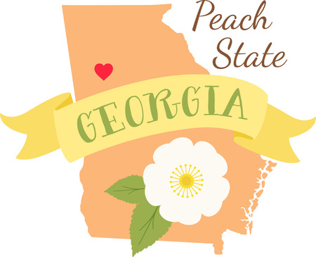 Show your love for your favorite state and its flower. Ilustracja