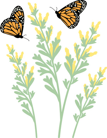 attract: Beautiful Flowers and colorful Butterflies! Flowers teaches how to attract Butterflies with this design by Hopscotch.