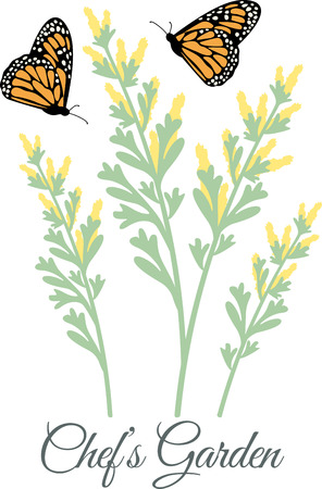 Beautiful Flowers and colorful Butterflies! Flowers teaches how to attract Butterflies with this design by Hopscotch.