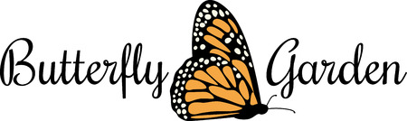 delight: Butterflies are Natures angels and they delight the beauty of Nature. Illustration