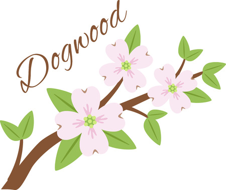dogwood tree: Give your garden a beautiful and colorful touch with this Dogwood Flowers designed by Hopscotch.