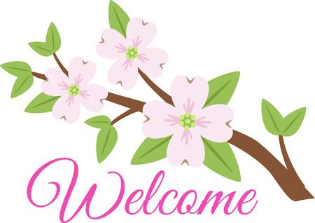 """""""Donnez à votre jardin une touche belle et colorée avec cette fleurs de cornouiller conçus par Hopscotch."""" Banque d'images - 43917251"""