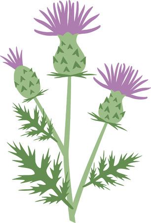 이 아름 다운 꽃 이미지 봄 디자인에 대 한 완벽 한입니다.