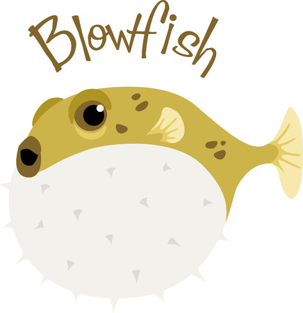 funny fish: A blowfish is a funny fish for a beach project.