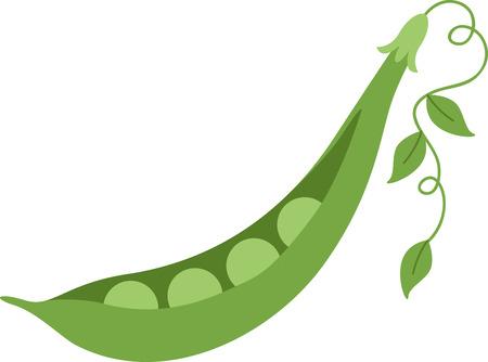 당신의 부엌 dcor에있는 맛있는 야채를 두십시오.