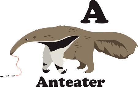 aardvark: Any kid will enjoy this anteater. Illustration