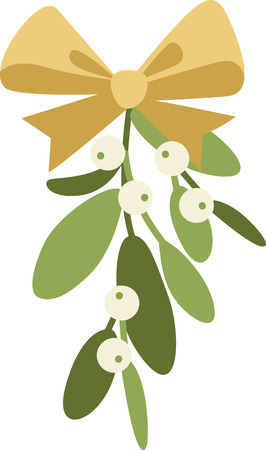 Mistletoe is a wonderful holiday decoration.