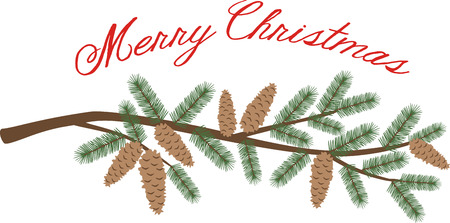 A pine branch is a great holiday decoration. Illustration
