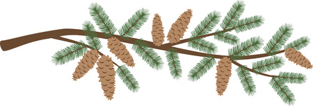 bough: A pine branch is a great holiday decoration. Illustration