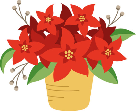 Poinsettias are a wonderful holiday decoration.