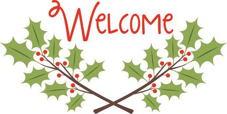 ilex: Holly is a wonderful holiday decoration.