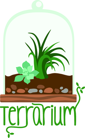 terrarium: Terrarium planter filled with succulent plants for the indoor gardener.