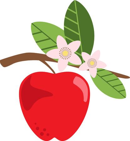 リンゴ花は晩春おいしい特に園芸瞬間を確認します。春のプロジェクトでこのデザインと春の新鮮さを広める!  イラスト・ベクター素材