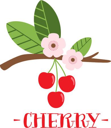 桜は遅く春の園芸の瞬間から特においしいを作る。春のプロジェクトでこのデザインと春の新鮮さを広める!
