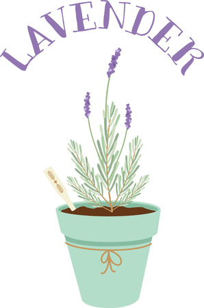 aromatique: Herbs are a gift given by God to enhance the beauty of our Nature.