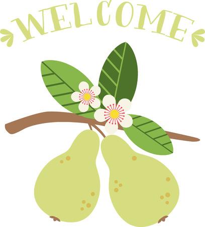 梨の花は、早く春の園芸の瞬間から特においしい確認します。春のプロジェクトでこのデザインと春の新鮮さを広める!  イラスト・ベクター素材