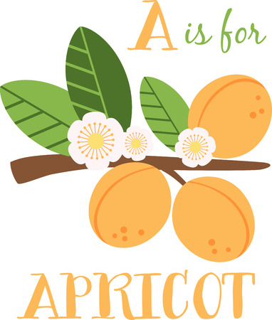 early spring: Apricot blossom make early spring a particularly delicious gardening moment. Spread spring freshness with this design on your spring projects!