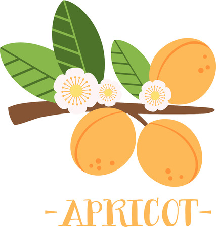 Apricot blossom make early spring a particularly delicious gardening moment. Spread spring freshness with this design on your spring projects!