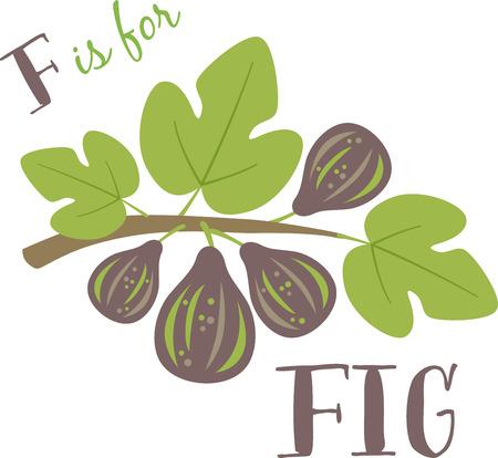 Fig fleur maquillage printemps particulièrement délicieux moment de jardinage. Étaler la fraîcheur du printemps avec cette conception de vos projets de printemps!
