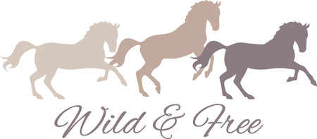 personalize: Personalize equestrian clothing with grace, beauty and power, with this design on horse riding gear including saddle pads, saddle cloths, riding jackets and riding wear.