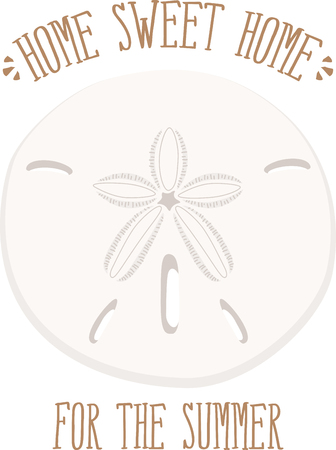 sand dollar: Saddle up for a close encounter with the seas most captivating creatures with this design on your home projects. Illustration