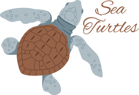 Be in touch with nature indoors!  Add oceans of charm with this turtle design on clothing and home decor. Illustration