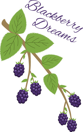 splendid: Create a splendid look for summer with tasty blackberries on place mats, framed embroidery and linens!