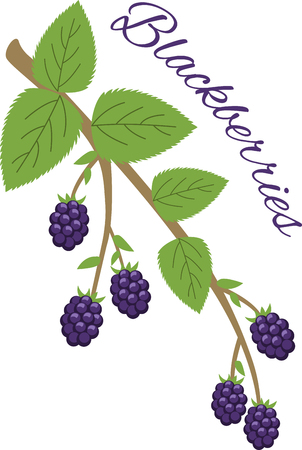 limbs: Create a splendid look for summer with tasty blackberries on place mats, framed embroidery and linens!