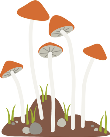 Join the hunt for one of the most sought-after mushroom marvels with this design on kitchen towels, napkins and more. Illustration