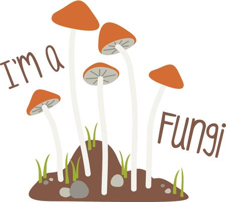부엌 수건, 냅킨 등에이 디자인으로 가장 인기있는 버섯 놀라운 일 중 하나에 대한 사냥에 참여하십시오.