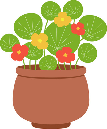 nasturtium: Plants add unique style and cheer to any space.  Get the spirit of spring on your projects with this design.