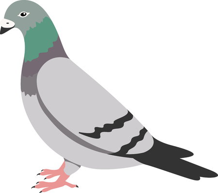 beak doves: This bird will make a stunning addition to any coastal home decor or as a perfect gift for the wildlife lover.