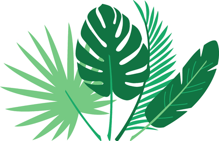 frond: Update your interiors with this elegant and cozy tropical themed palm frond design on bedspreads, throw pillows, framed embroidery and more. Illustration