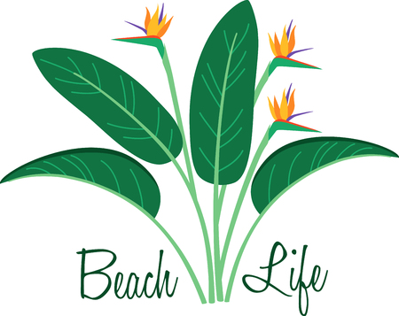 bloom bird of paradise: Decorate your homes with the warm glow of birds of paradise and add a tropical flavor to your projects with this bold and beautiful design.